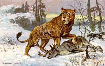 В якутии найдены останки детенышей пещерного льва уникальной сохранности