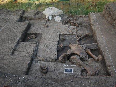 В эпоху палеолита в греции охотились на слонов