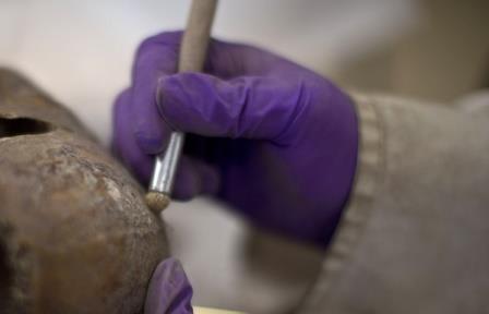 В казахстане обнаружены останки захоронения воина тюркского периода vi-vii веков