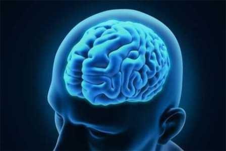 В мозге обнаружен узел, управляющий глубоким сном