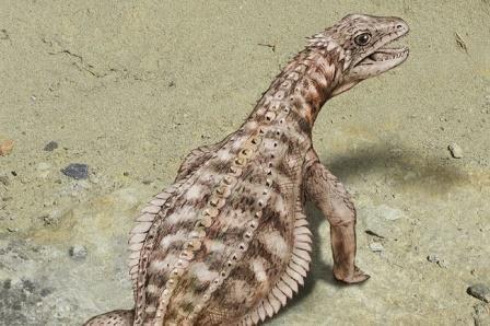 В швейцарии нашли полный скелет древнего ящера, которого считали морским
