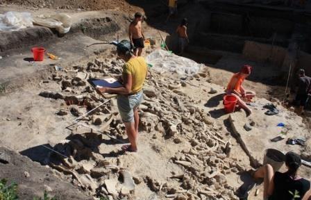 В воронежской области найдена стоянка древних людей, живших более 18 тыс. лет назад