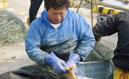Запрет на дрифтерный промысел в российских водах: удар по нэмуро, который лишился лосося и форели - «экономика»