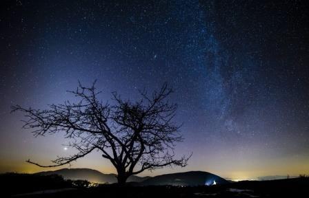 Звезды могут свободно перемещаться в космосе